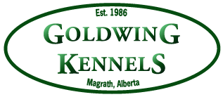 Goldwing Kennels